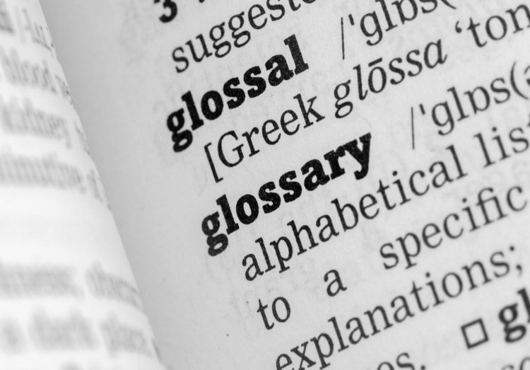 all-you-need-to-know-about-digital-magazine-apps-in-a-practical-glossary
